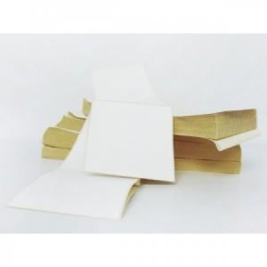 Estuche Etiquetas Térmicas 100mmx100mm (5400 Etiq.)